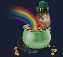 Irish Squirrel Kids Clothes