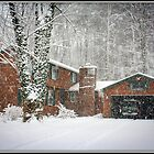 Snowy Day on Tinker Tavern Road by Mikell Herrick