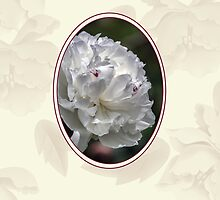 Sympathy Card With Delicate White Flower by Moonlake