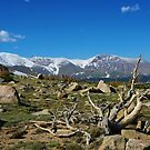 High Rockies, Colorado by Claudio Del Luongo