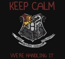 Keep Calm We're Handling It by mdesign