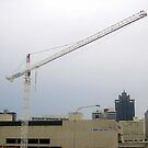 thee cranes ov Brisbane 2013 DAILY TOUR - Day 44 by Craig Dalton