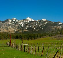 Rocky Mounains and fence posts by Jay  Goode