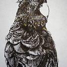 Parrot by Szymon Marciniak
