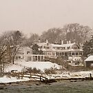 Vineyard Haven harbor by Choux