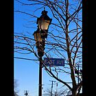 East Avenue Street Light - Riverhead, New York  by © Sophie W. Smith