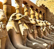 Lost Guardians - Avenue of Sphinxes by Mark Tisdale