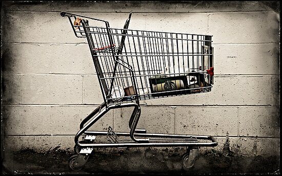 Abandoned Shopping Cart #1 by Dave Ingram