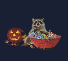 Halloween Raccoon by jkartlife