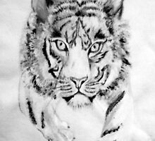 B & W Tiger by natsatcreations