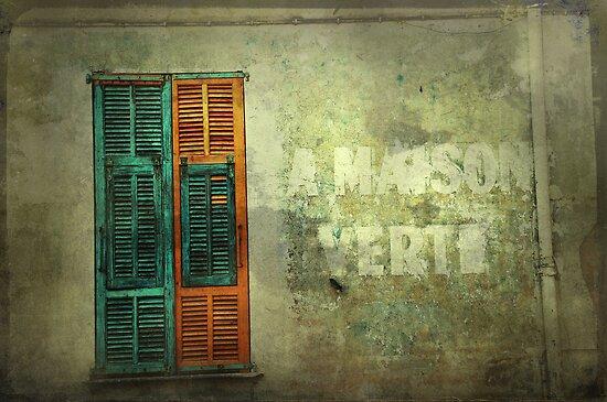 La Maison Verte (The Green House) by Patito49