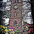 Christ Church by thepicturedrome