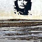 Che Guevara by Aisling Lynch