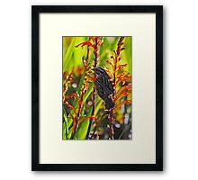 Bird on Flowers Framed Print