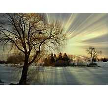 Setting sun © Photographic Print