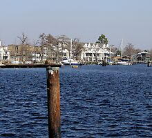 Harbor Life by WeeZie
