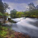 Down by the River by peaky40
