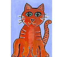 Friendly Cat Photographic Print