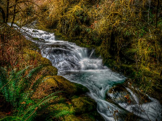Boom-Boom-Boom-Boom by Charles & Patricia   Harkins ~ Picture Oregon