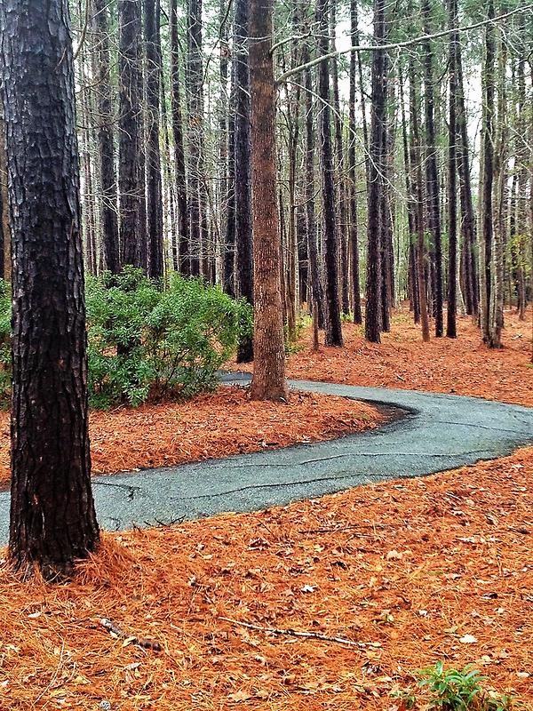 Bluffton, South Carolina by fauselr