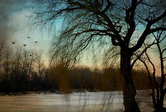 Nature's season © by Dawn M. Becker