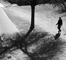 Walking Through The Shadows of Winter .. by Berns
