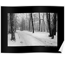 Dirt Road Covered With Snow - Middle Island, New York  Poster