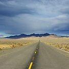 Lonesome highway through Nevada desert by Claudio Del Luongo
