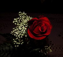 George Got The Red Rose This Year...From Me '~} by trueblvr