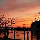 Orange Sunset by BrowncoatAllie