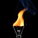 Energy Saving Lightbulb by Gary Murison
