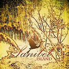 Sanibel by Jaee Pathak