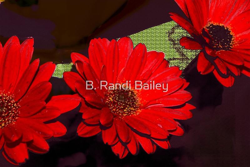 Red gerbera daisies by ♥⊱ B. Randi Bailey