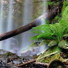 Hopetoun Falls Victoria. by Julie  White