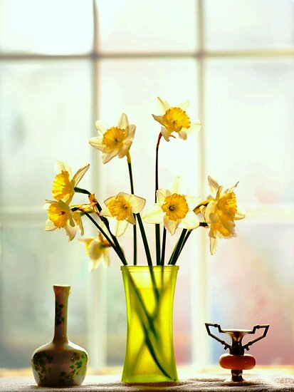 flowers 'n things.. by JOSEPHMAZZUCCO