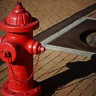 Red Fire Hydrant by Scott Dovey