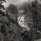 Firehole Fog Monster (BW) by JamesA1