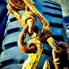 Vehicle towing chain by Janine Barr