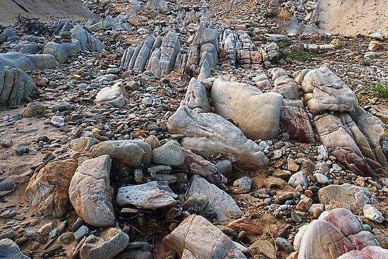 Just Rocks by Warren. A. Williams