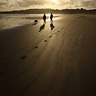 Early Shadows And Prints In The Sand by ShotsOfLove