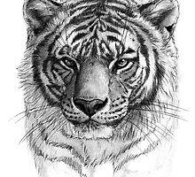 Tiger SK0102 by schukinart