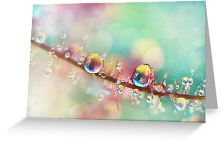 Rainbow Smoke Drops by Sharon Johnstone