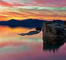Bonsai Sunset 2 by Dianne Phelps