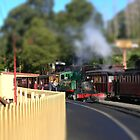 Puffing Billy - tilt shifted by PhotosByG