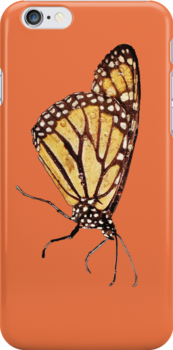 Monarch Butterfly Print on Orange/Red by DreamByDay