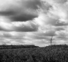 Prairie Clouds Rolling By by Brian Gaynor