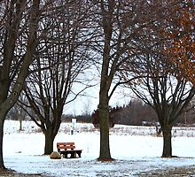 Have a seat. by Dipali S