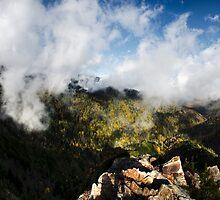 Charles Bunion Panorama - Great Smoky Mountains National Park, North Carolina by Jason Heritage