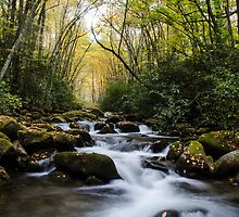 Oconaluftee River - Great Smoky Mountains National Park, North Carolina by Jason Heritage