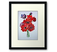 The Wild Anemone Framed Print